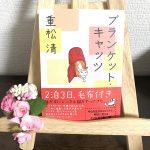 【読書日記】ブランケットキャッツ/重松清
